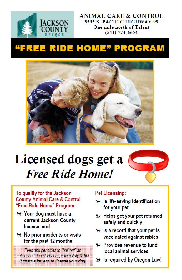 licensed dogs get a free ride home