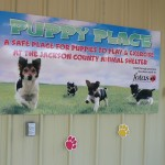 Puppy Place