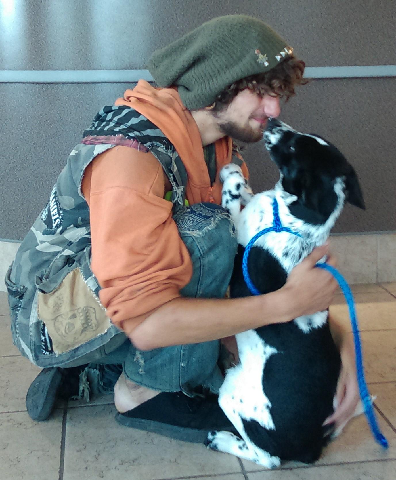 Street Dog Pickup