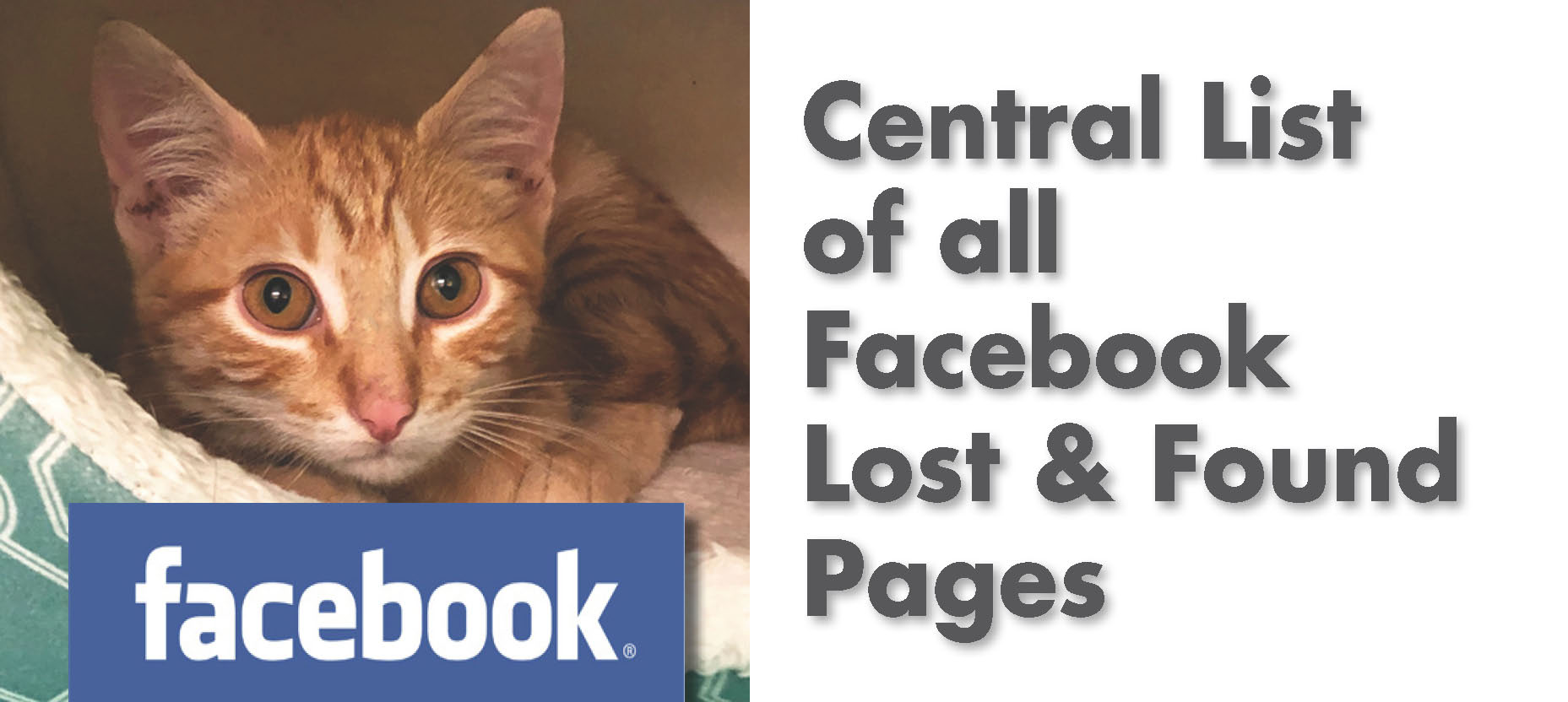 List of Known Fire Related Animal Lost and Found Facebook Pages